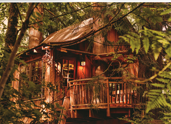 Treehouse - Photo Rag - Copyright Ron Martinsen - ALL RIGHTS RESERVED