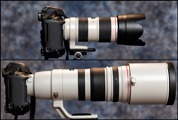 ron martinsen 39 s photography blog review canon ef 200 400mm f 4l is usm lens with internal. Black Bedroom Furniture Sets. Home Design Ideas