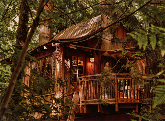 Treehouse - Canon PRO-2000 on Canon Pro Luster